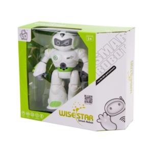 Rádiótávirányítású robot